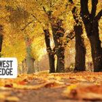 Portland Metro Weekend Planner: November 1-3, 2019