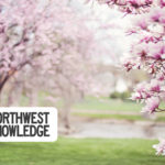 Berkshire Hathaway HomeServices Northwest Real Estate Weekend Planner April 9-12, 2020