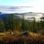 Pacific Northwest Hikes: Spencer Butte Trail