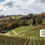 Oregon & SW Washington Weekend Planner: November 19-22, 2020