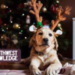Oregon & SW Washington Weekend Planner: December 24-27, 2020